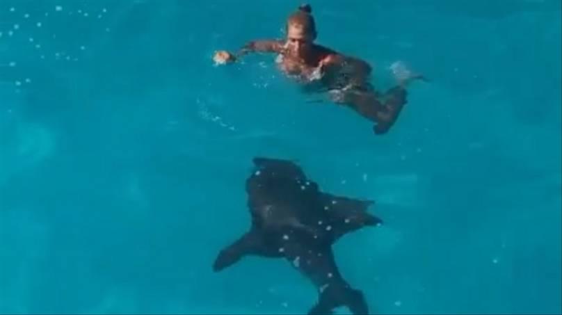 Mulher desce em escorregador no meio do mar e cai bem ao lado de um Tubarão Lixa