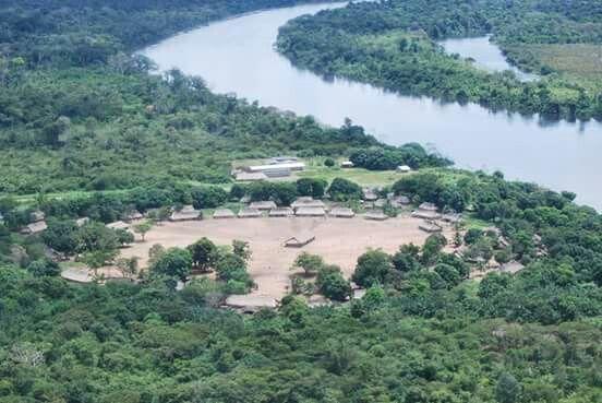 Tribos indígenas brasileiras se unem para proteger a floresta amazônica