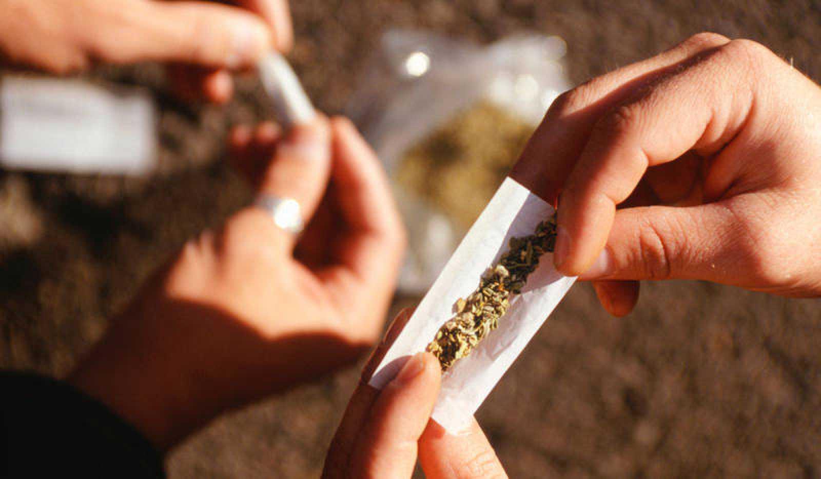 Consumo de cannabis pode envelhecer o cérebro em quase três anos