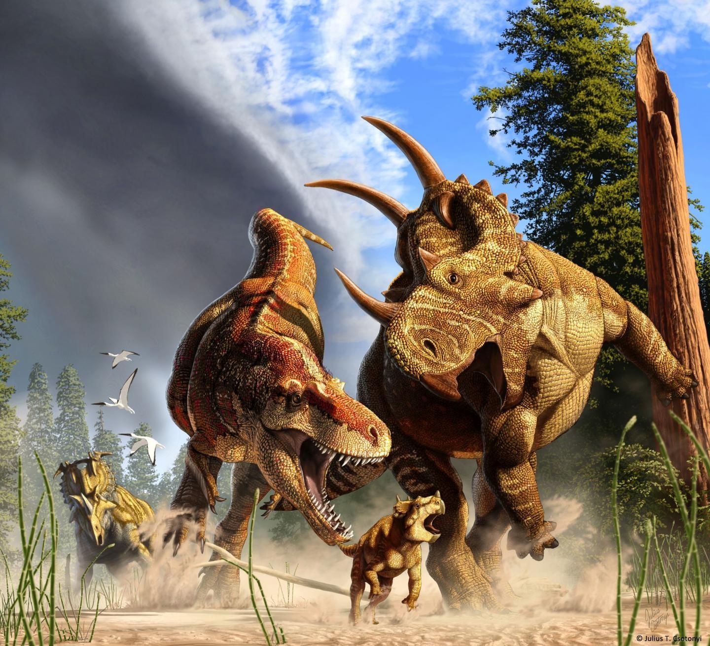Cientistas buscam pela verdade por trás dos Duelos de Dinossauros
