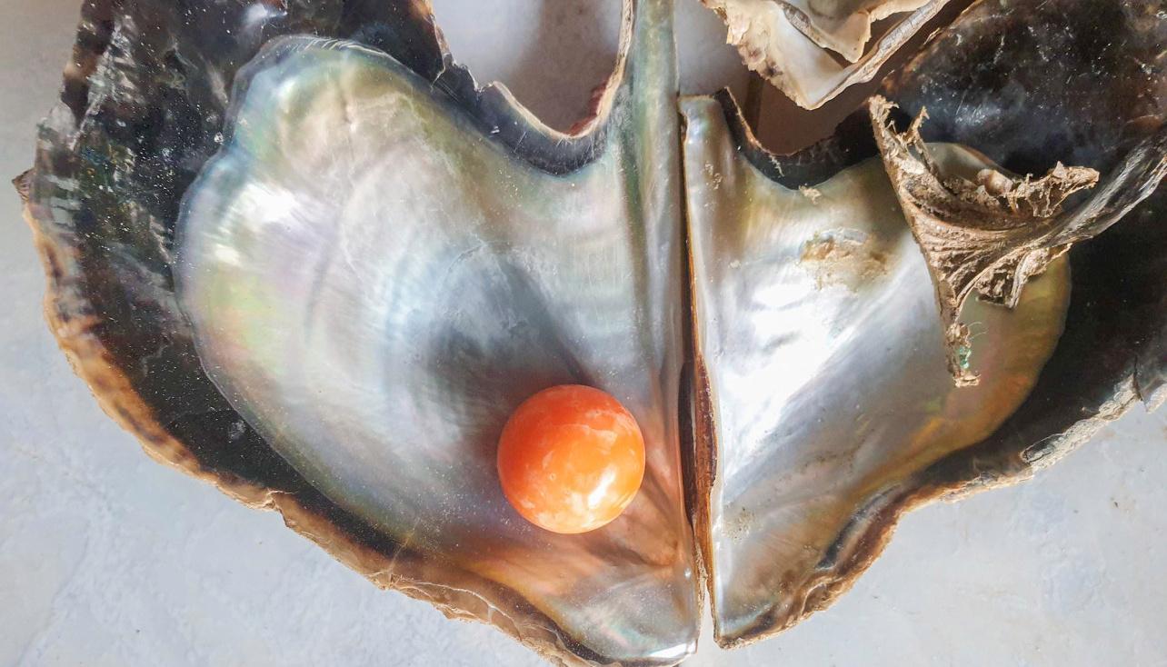 Pescador encontra uma rara pérola laranja que pode valer até 250.000 Euros